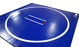 Home Use Wrestling Mats